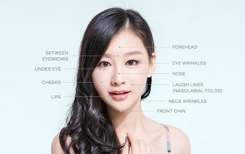 按区域分适合进行皮肤注射的人